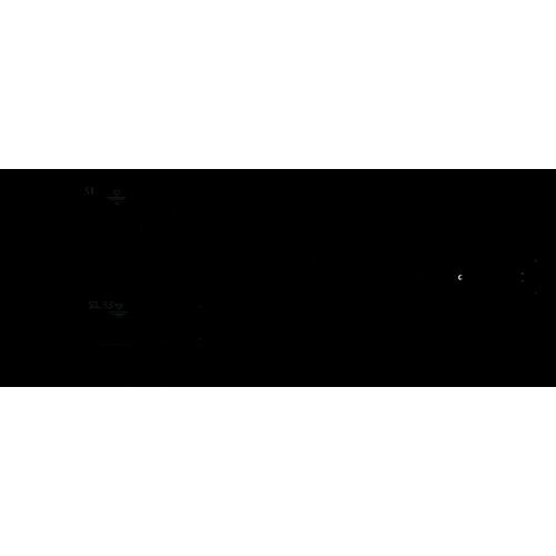 Фекальный насос  Wilo REXA PRO C06DA-348/EAD1X2-T0039-540-O